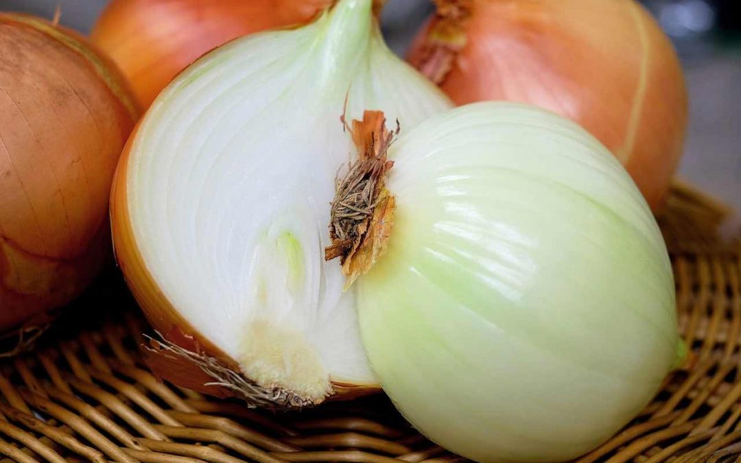 onion-cough relief