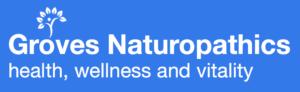 GN Logo 3
